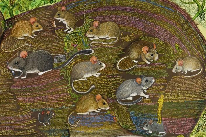 wildlife art artist irene hardwicke olivieri